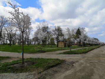 Bad Dürrenberg - Baustelle Kurpark