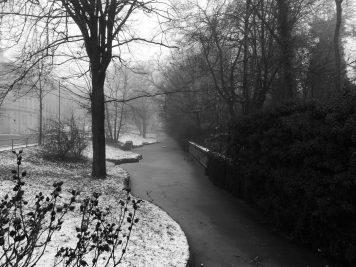 Der Bärteich in Köthen im Winternebel