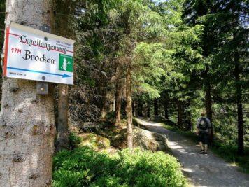 Brocken Wanderweg: Exzellenzenweg