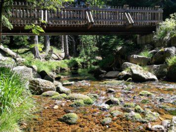 Brücke über die Kalte Bode
