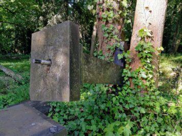 Umgestürztes Kreuz, das von Baumstämmen eingeschlossen wurde - Dessau Friedhof 3