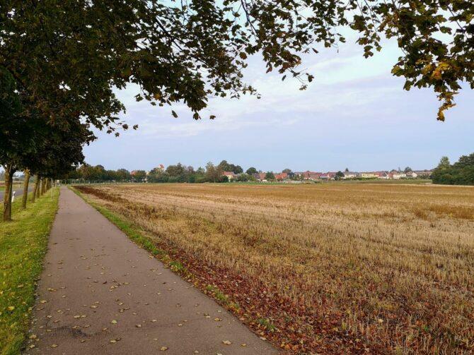 Edderitz - Südwestseite des Orts mit Stoppelfeld
