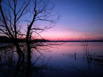 Edderitzer See zur Blauen Stunde