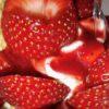 Erdbeereisbecher Fresco Gelato