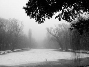 Der Hubertusteich im Nebel, Blickrichtung nach Süden