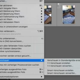 Lightroom Smart-Vorschau