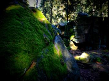 Moosbewachsene Felsen der Teufelsmühle Friedrichsbrunn