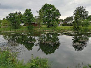 Blick auf den Ferienpark Birnbaumteich