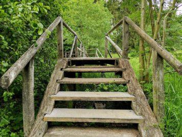 Birnbaumteich: Steg/Brücke auf der Südseite