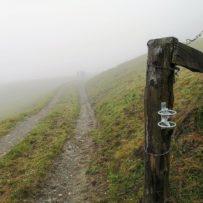 Panoramaweg Piesendorf: Irgendwo auf 1085 Meter Höhe