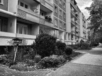 Silberhöhe: Albert-Roth-Straße