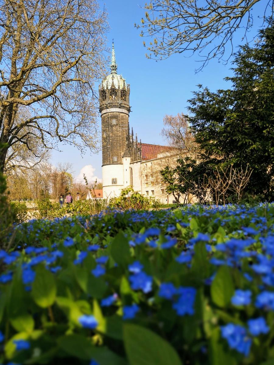 Wittenberg - Schlosskirche, Turm