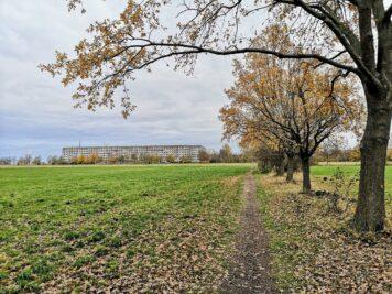 Herbstlicher Blick zur Fuhnestraße